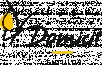 Logo Domicil Lentulus